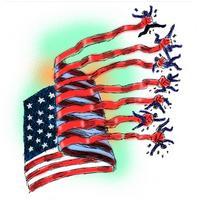 flag grabs